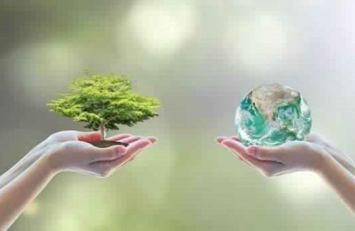 The environmental  Programs